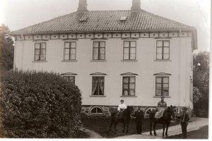 Randineborg gnr. 8, bnr. 1 sett fra nord